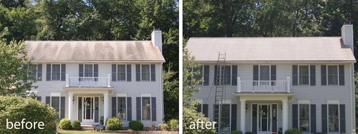 Why Should You Hire Tri County Roof Cleaners To Clean Your Roof?